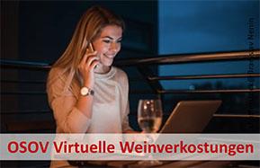 Virtuelle Verkostungen des OSOV