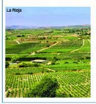 Weinreise: La Rioja - Navarra - Baskenland