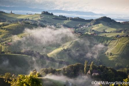 VieVinum: Die große Bodenvielfalt der Steiermark im Vergleich – Ein Blick in die Tiefe