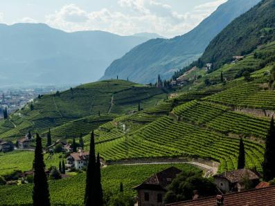 KSOV Weinreise Südtirol