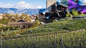 Weinreise Bilbao & La Rioja mit Hans Stoll