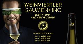 Weinviertel DAC im neuen Format im März – Profis only!